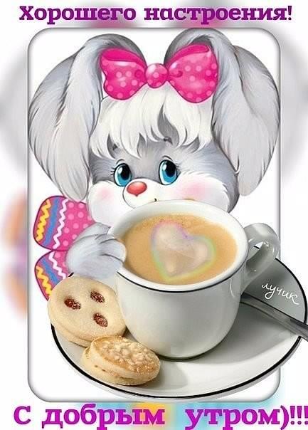 Доброе утро гифки анимашки зайчик, картинках мультяшные